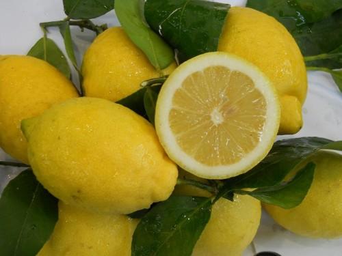 limonV